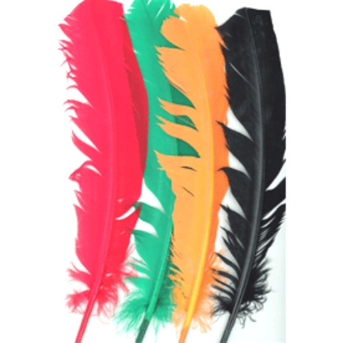 Indian Feathers 25 Per Bag