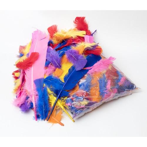 Feather Assortment 100g Bag (MF100)